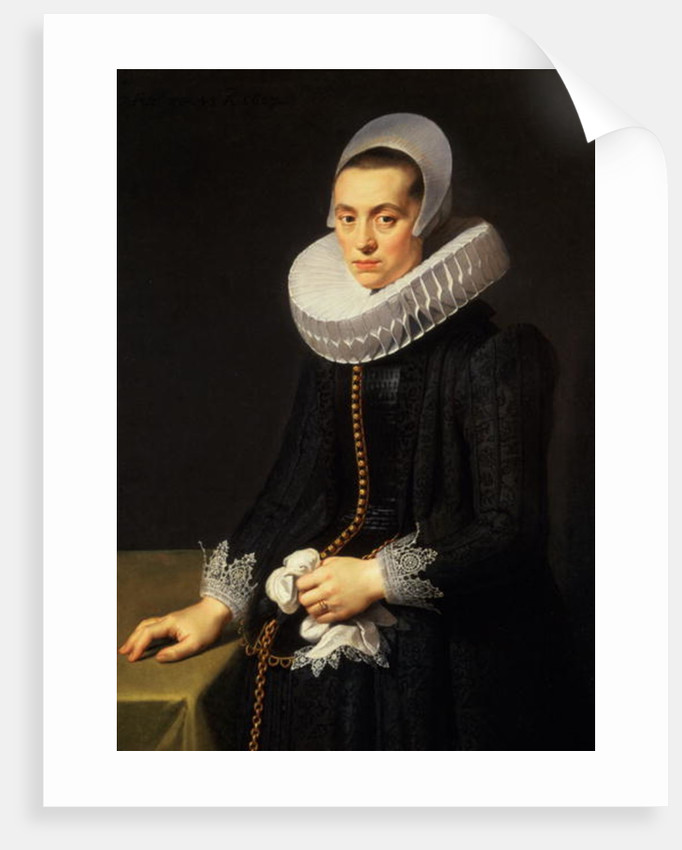 Portrait of a Lady in a Black Dress by Nicolaes Eliasz