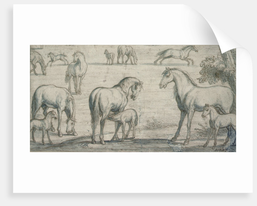 Mares and Foals, 17th century by Francis Barlow