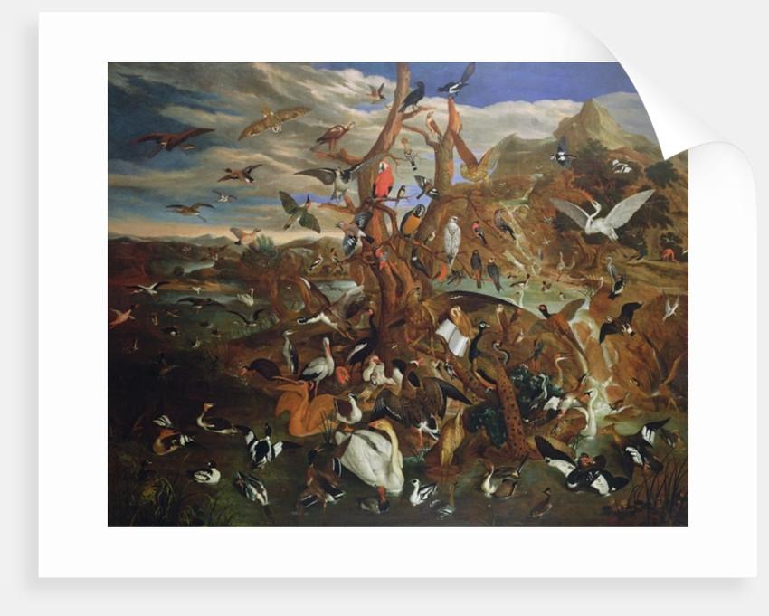 The Parliament of Birds by Carl Wilhelm de Hamilton