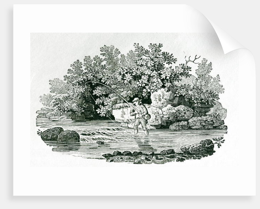 An Angler in a River Pool by Thomas Bewick