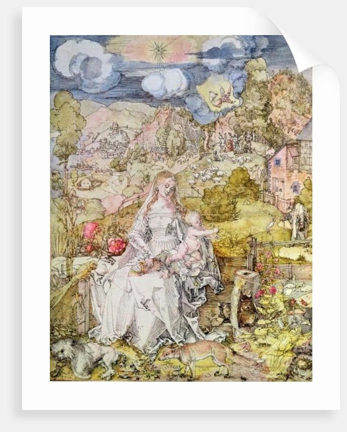 Madonna and Child by Albrecht Dürer or Duerer