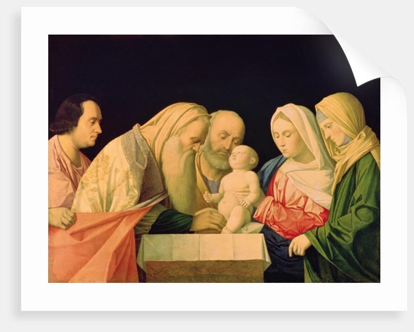 The Circumcision by Vincenzo di Biagio Catena
