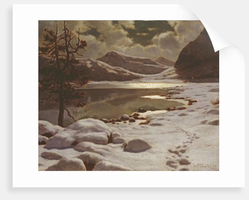 Moonlight in Winter by Ivan Fedorovich Choultse