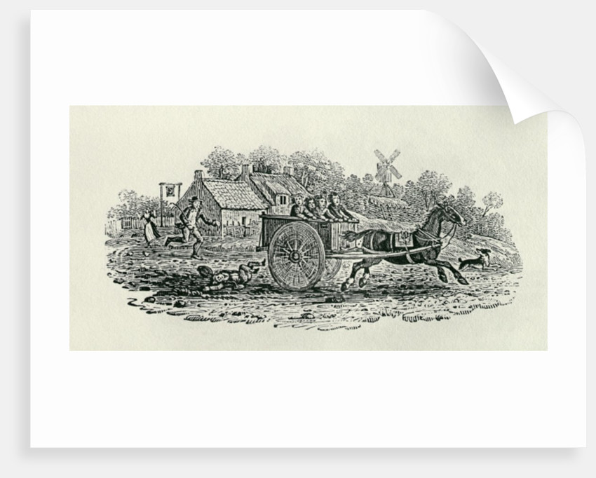 Runaway Cart from 'Land Birds by Thomas Bewick
