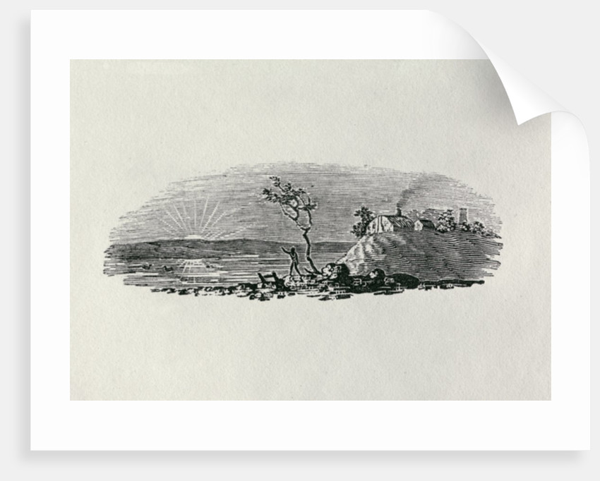 Winter Sunset by Thomas Bewick