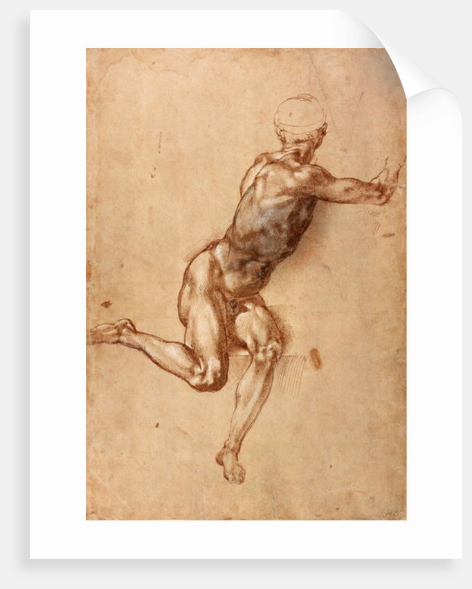 A seated male nude twisting around by Michelangelo Buonarroti