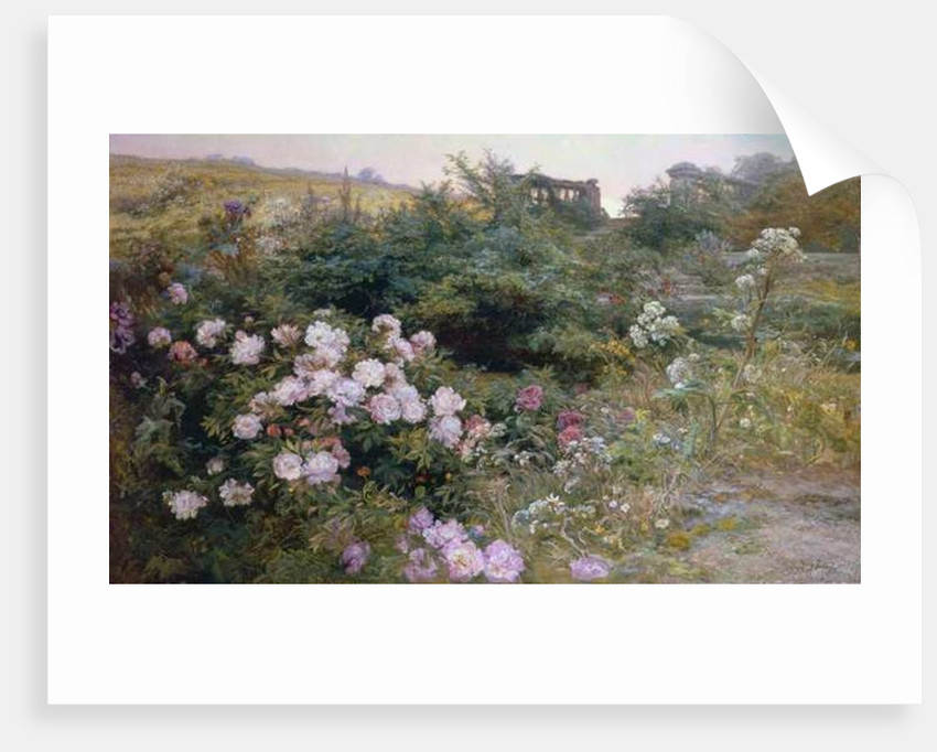 In Full Bloom by Henry Arthur Bonnefoy