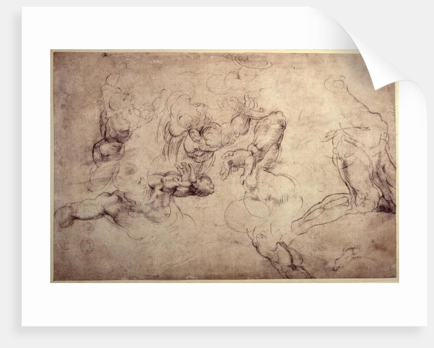 W.61v Male figure studies by Michelangelo Buonarroti