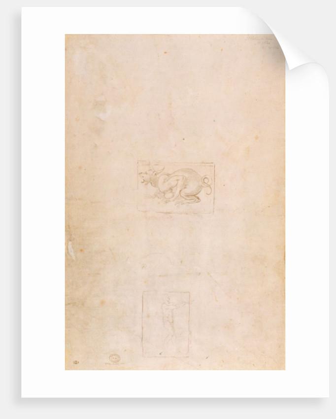 W.54 Study of a dragon by Michelangelo Buonarroti
