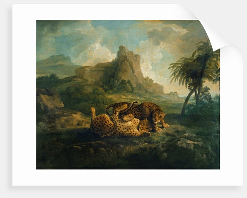 Tygers at Play by George Stubbs