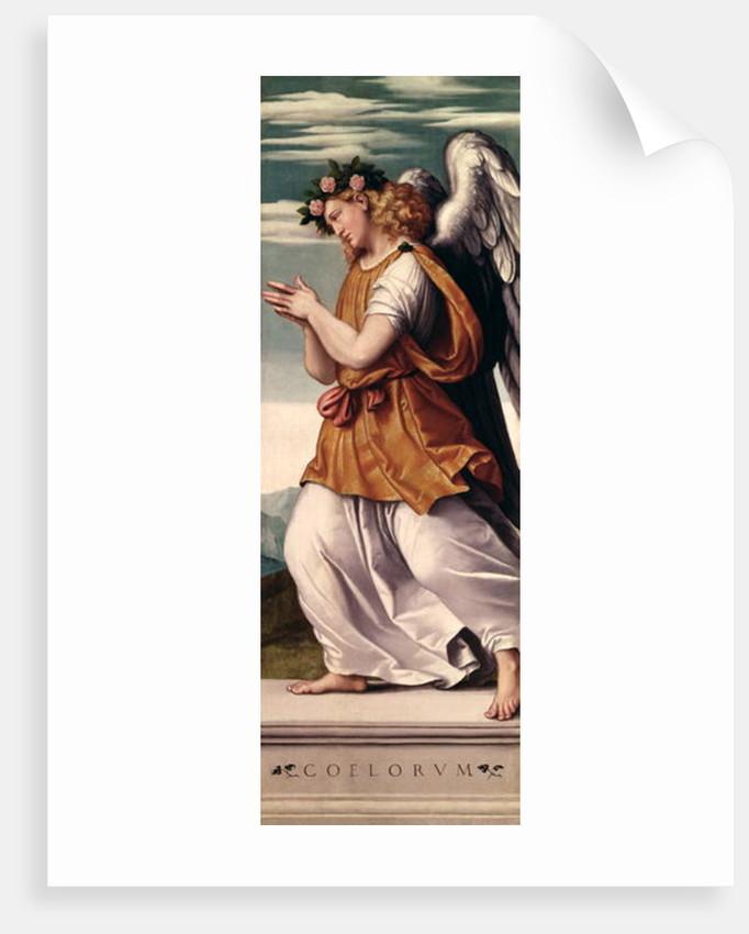 An Angel by Giovanni Battista Moroni