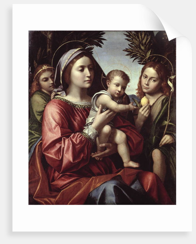 The Virgin and Child, St. John the Baptist and an Angel by Paolo Morando