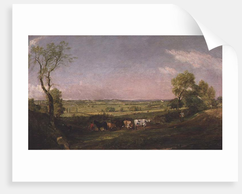 Dedham Vale: Morning by John Constable