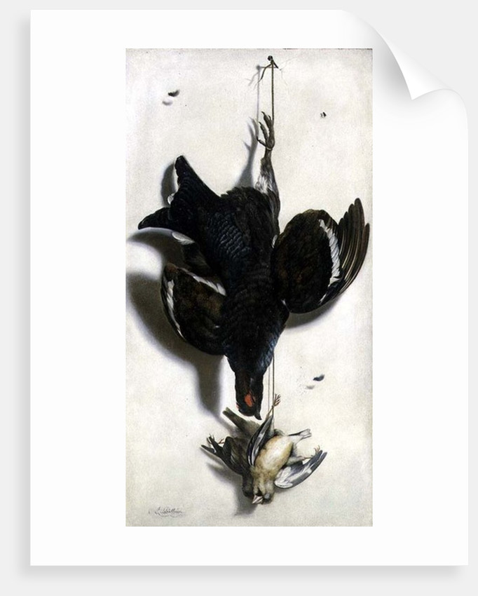 Trompe l'oeil of a black grouse and finches by Jacobus Biltius