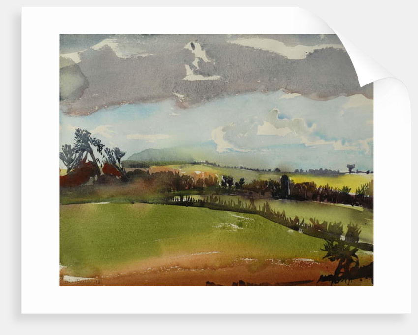 Breezy Afternoon, 1981 by Brenda Brin Booker
