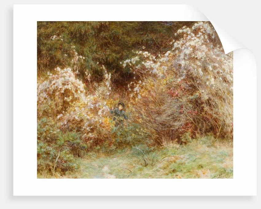 Traveller's Joy: A Surrey Hedgerow by Helen Allingham