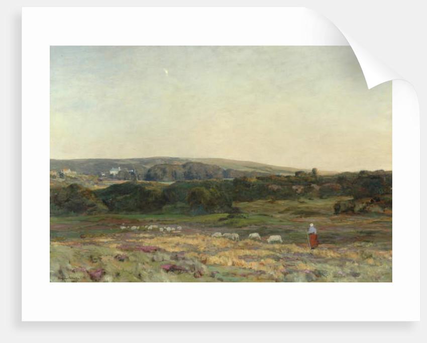 Evening Twilight, Studland, Dorset, 1904 by Herbert Hughes-Stanton