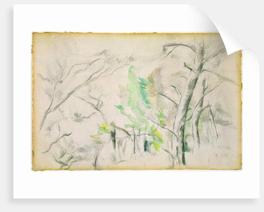 Woodside by Paul Cezanne