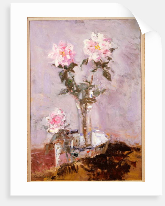 Pink Roses in a Glass Vase, 1911 by Francis Campbell Boileau Cadell