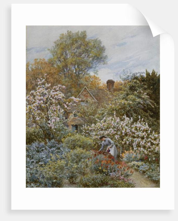A Garden in Spring by Helen Allingham