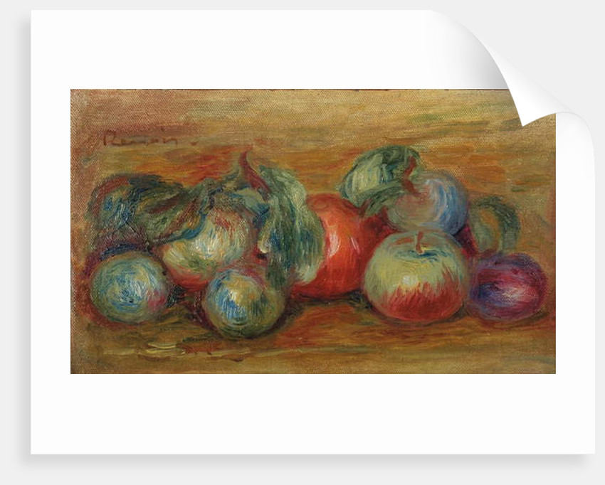 Still Life with Fruits by Pierre Auguste Renoir