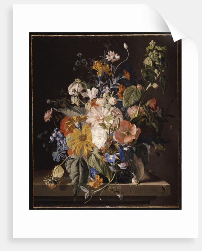 Poppies, Hollyhock, Morning Glory, Viola, Daisies, Sweet Pea, Marigolds and other Flowers in a Vase with a Snail on a Ledge by Jan van Huysum
