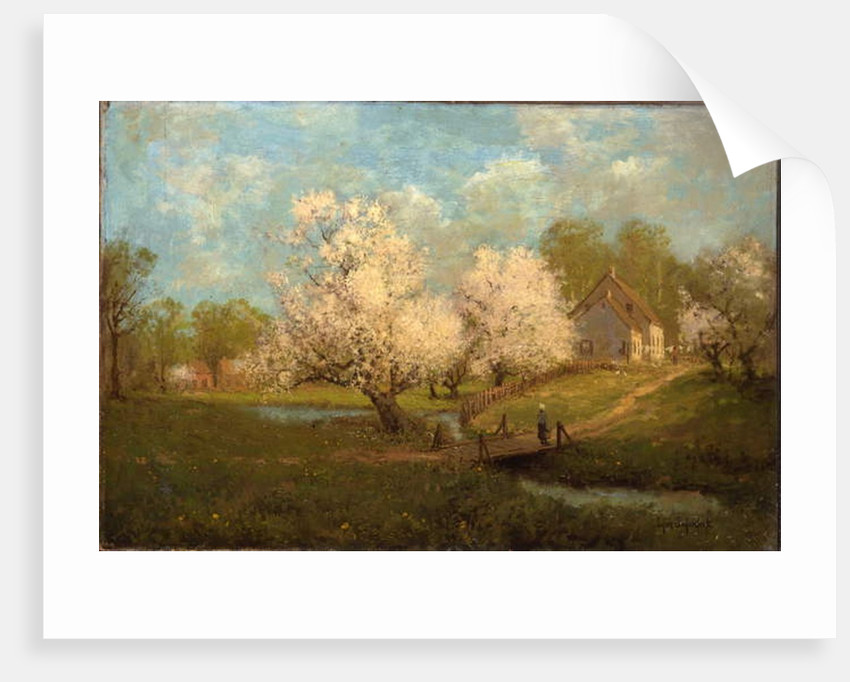 Spring Blossoms by Julian Onderdonk