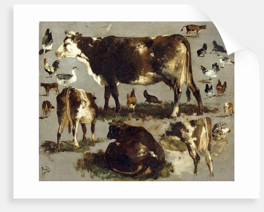 Studies of Cows, Hens, Roosters, a Goose and a Sheep by Rosa Bonheur