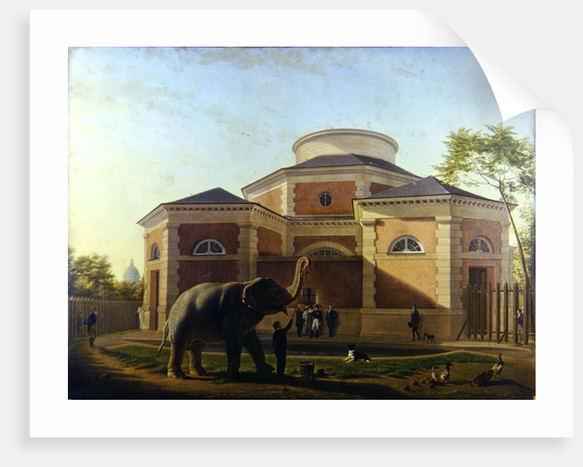 The Duc and Duchesse de Berry visiting the elephant at the Jardin des Plantes in Paris, 1817 by Jean Baptiste Berre