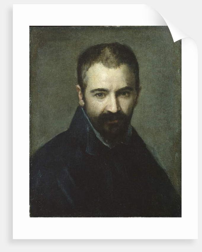 Portrait of a Man, c.1590 by Italian School