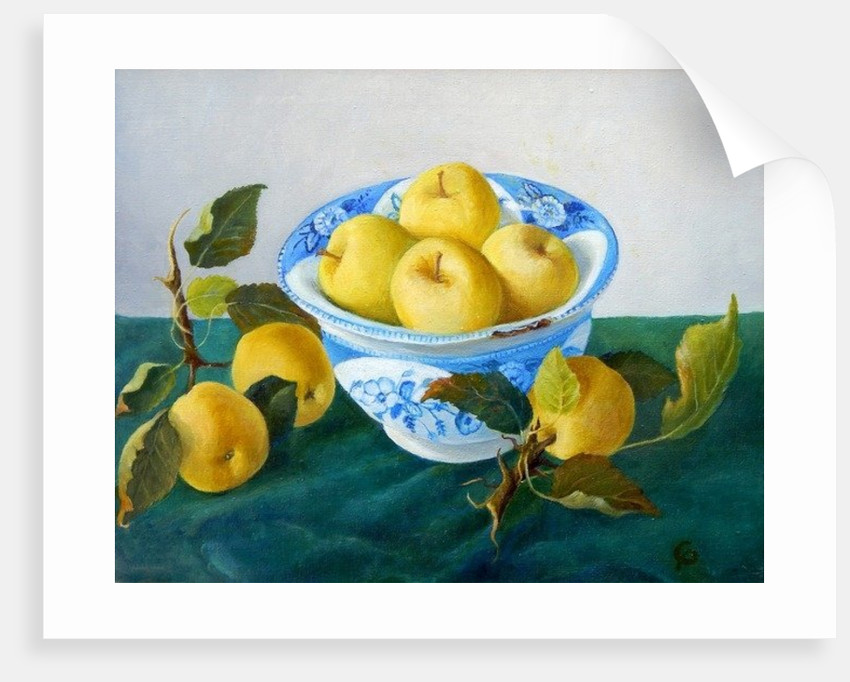 Apples in a Blue Bowl by Cristiana Angelini