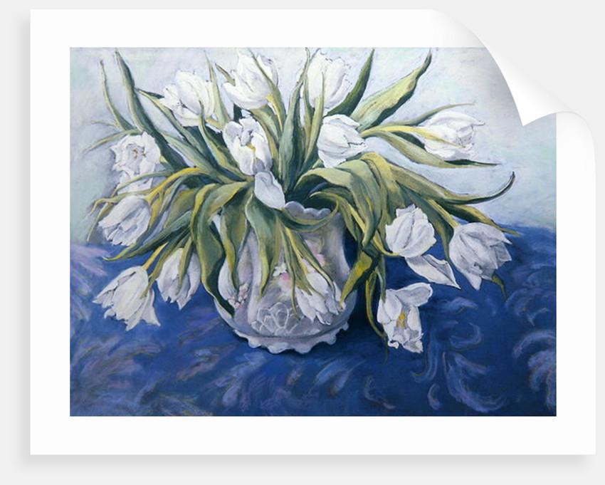 White Tulips by Cristiana Angelini