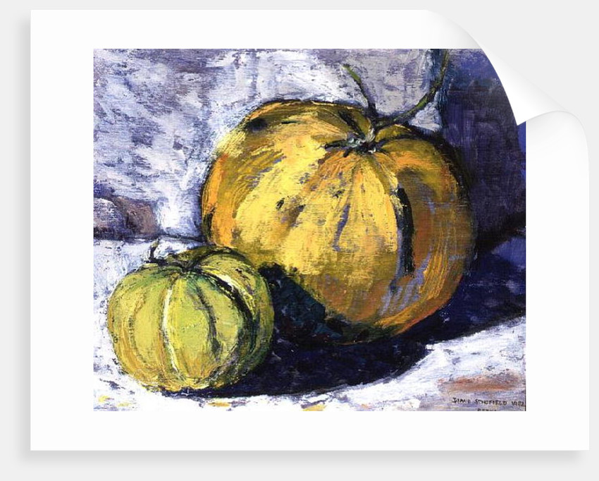 Melons in the Sun, 1982 by Diana Schofield