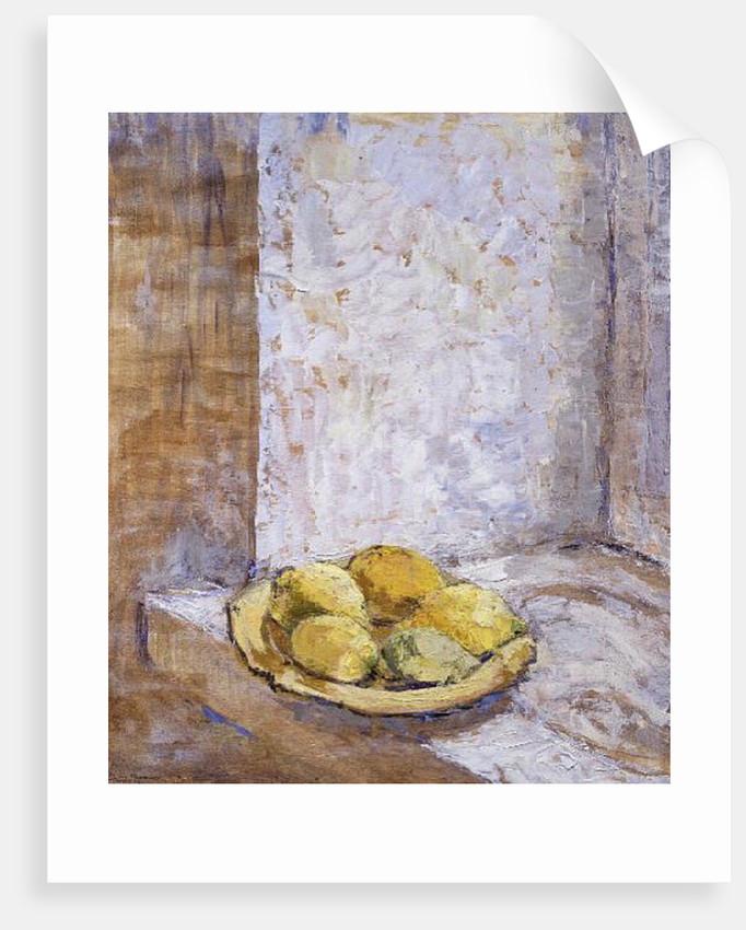 Lemons on the window sill, 1993 by Diana Schofield