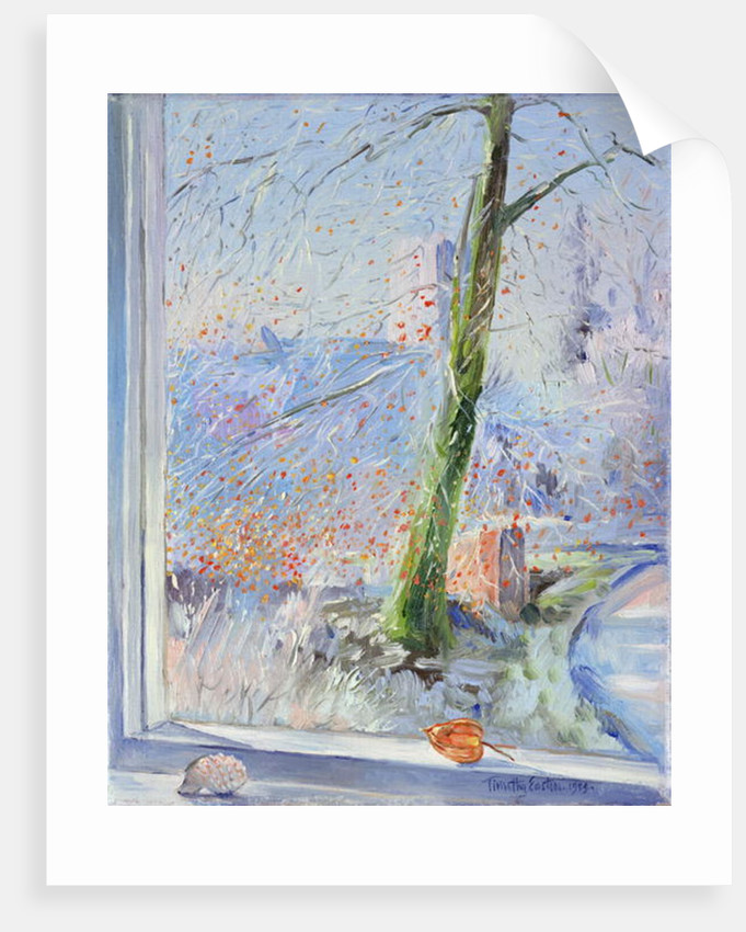 Beech Tree and Haw Frost by Timothy Easton