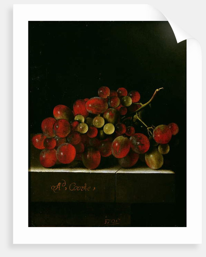 Bunch of Grapes, 1705 by Adrian Coorte
