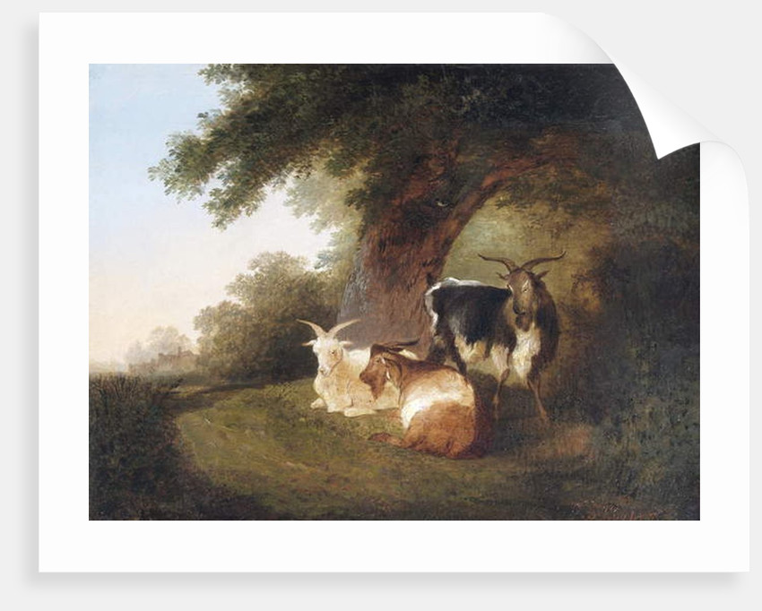 Three Goats in a Landscape, 1848 by Thomas Sidney Cooper