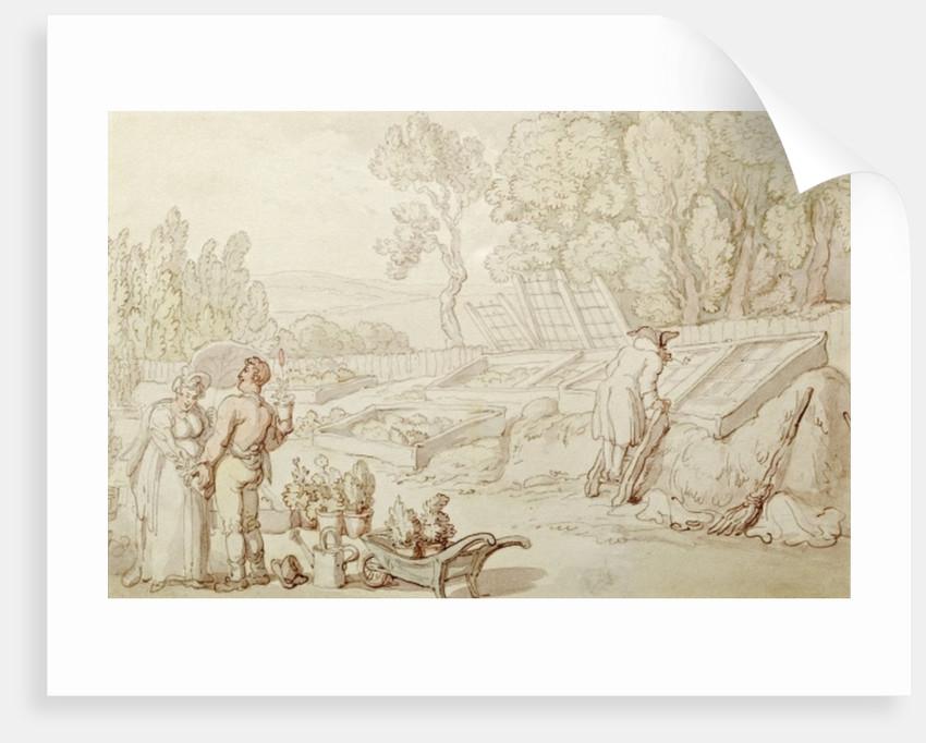 The Amorous Gardener by Thomas Rowlandson