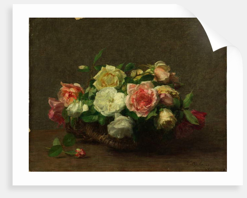 Roses by Victoria Dubourg