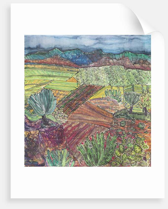 Oaxaca Landscape by Hilary Simon