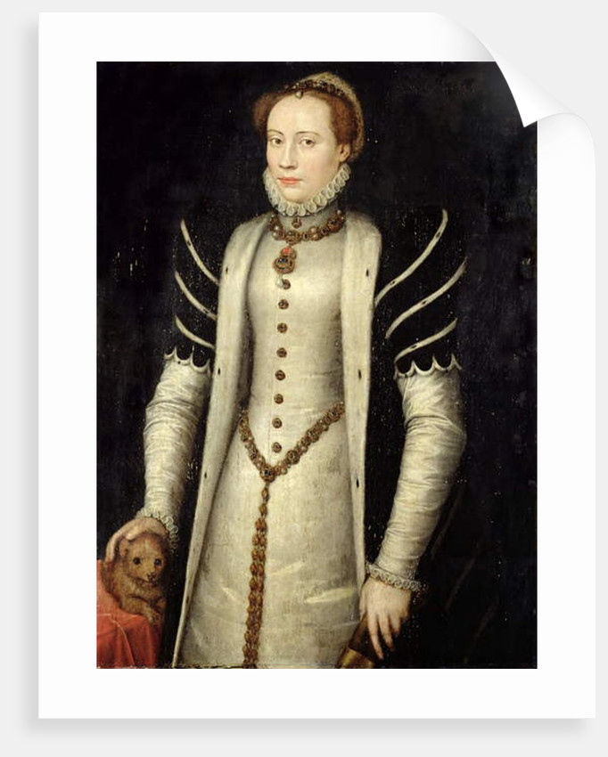 Portrait of a Noblewoman with a Puppy, 1555 by Anthonis van Dashorst Mor
