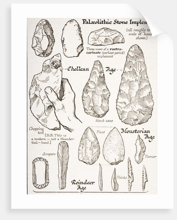 Early Stone Implements by English School
