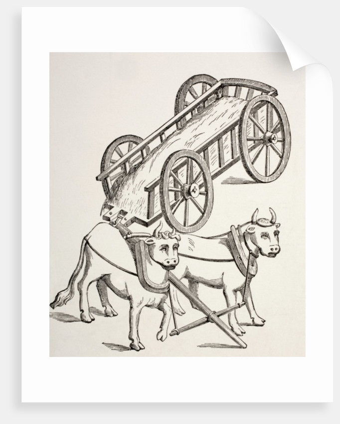 15th century cart drawn by oxen by French School