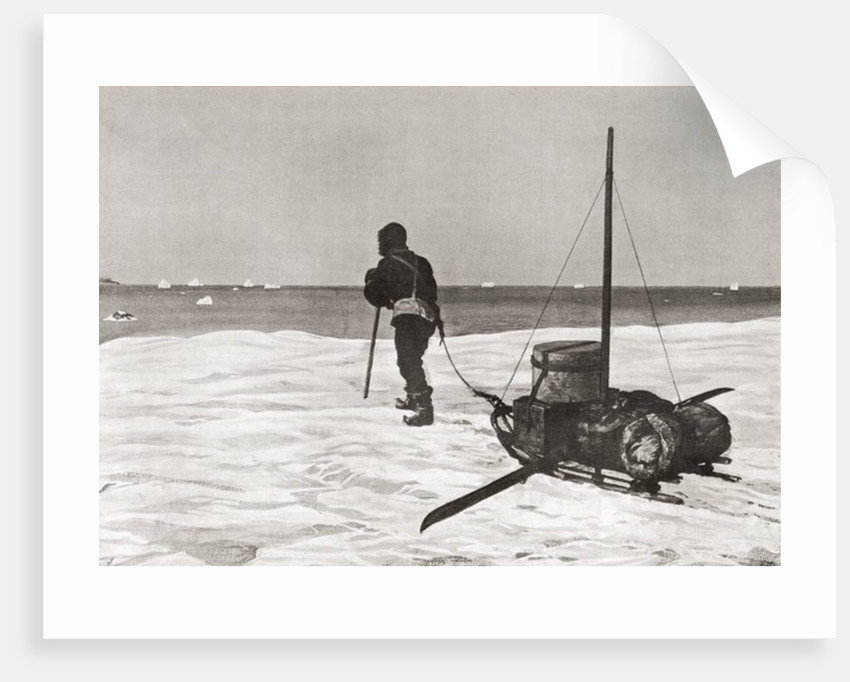 Dr. Douglas Mawson arriving back too late for his ship the SY Aurora, during his Australasian Antarctic Expedition by Anonymous