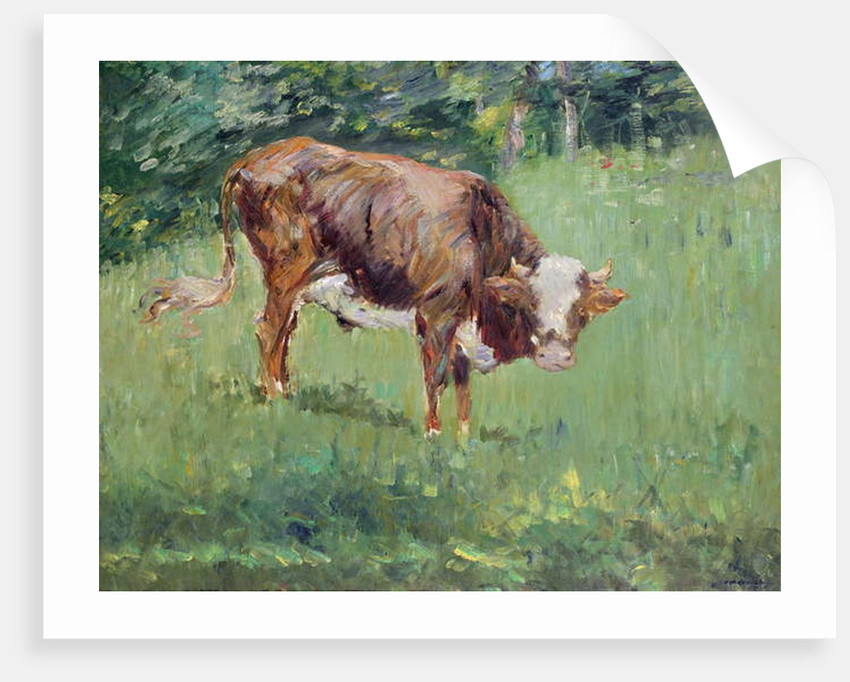 Young Bull in a Meadow, 1881 by Edouard Manet