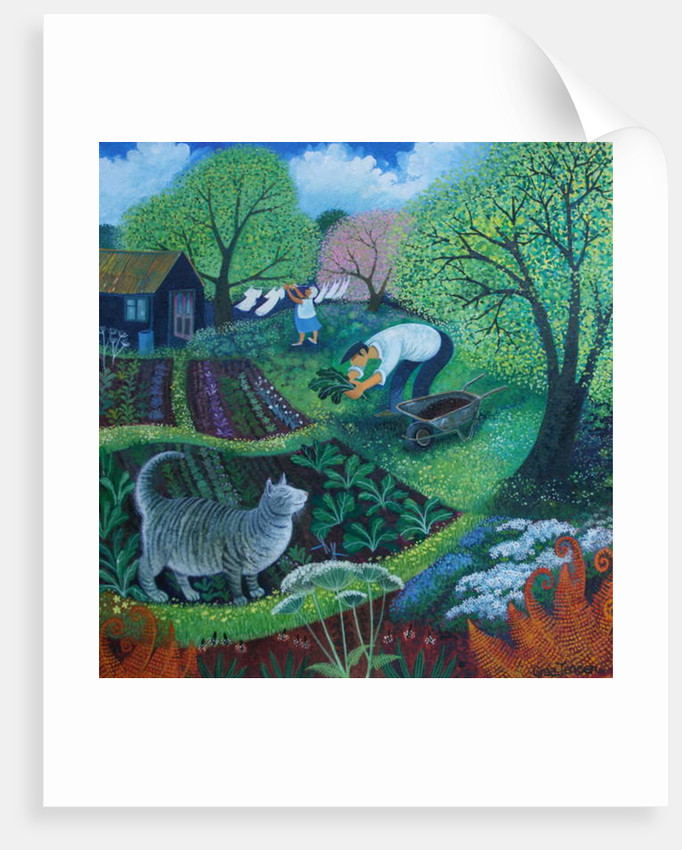 Allotment Cat by Lisa Graa Jensen