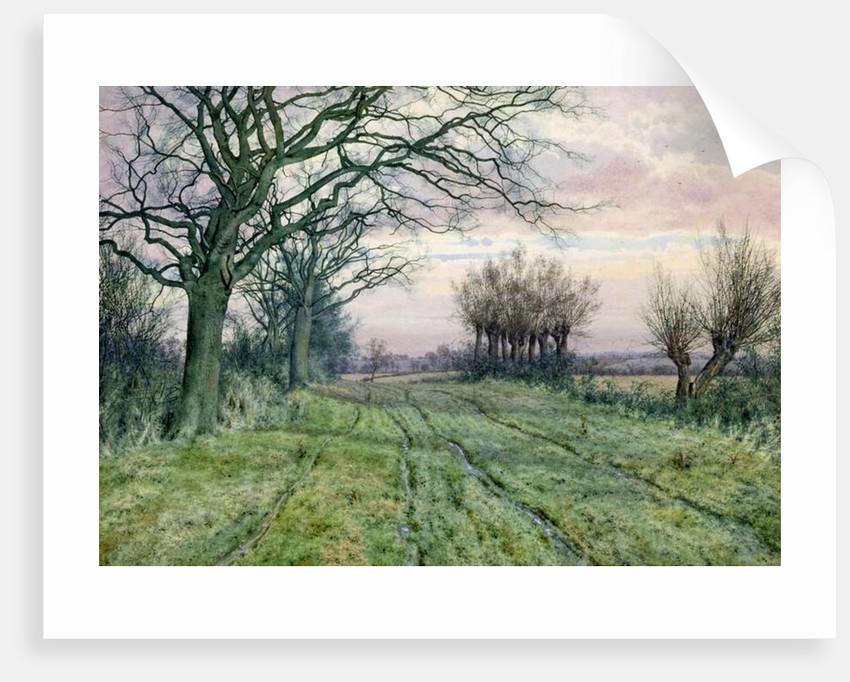 A Fenland Lane with Pollarded Willows, 1887 by William Fraser Garden