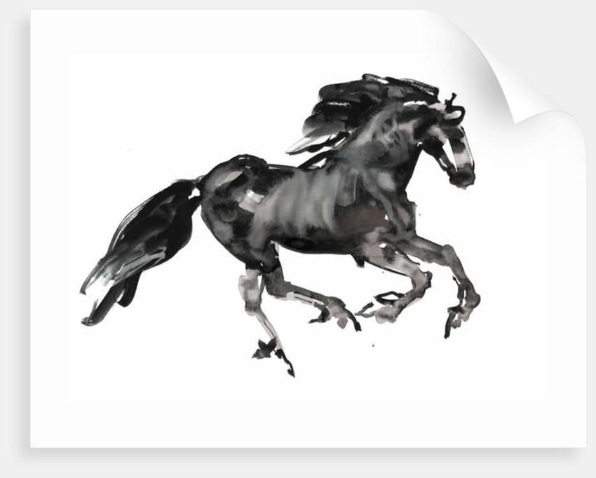 Gallop, 2015 by Mark Adlington