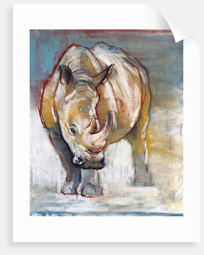 White Rhino, Ol Pejeta, 2018 by Mark Adlington