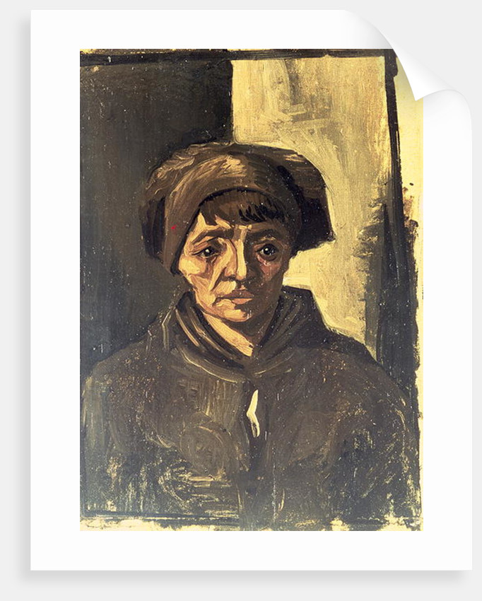 Bust of a Peasant, 1884 by Vincent van Gogh